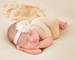 Toledo Newborn Photographer Perrysburg