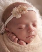 Toledo Newborn Photography