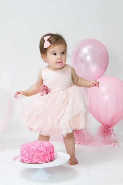 Sylvania Baby Photographer Cake Smash