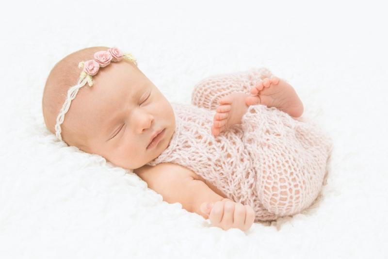 Perrysburg Newborn Portraits