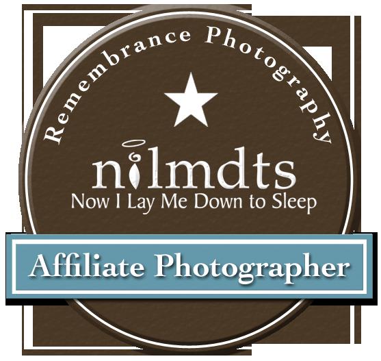 NILMDTS
