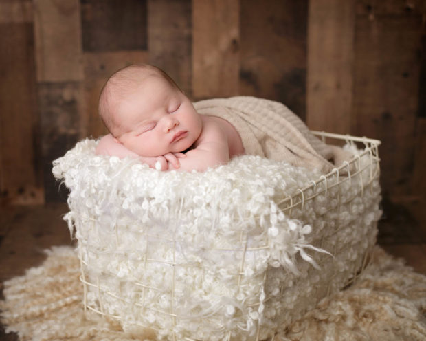 Toledo Newborn Photographer