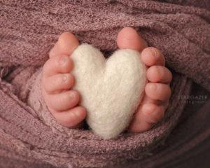 Toledo Newborn Infant Baby Photographer